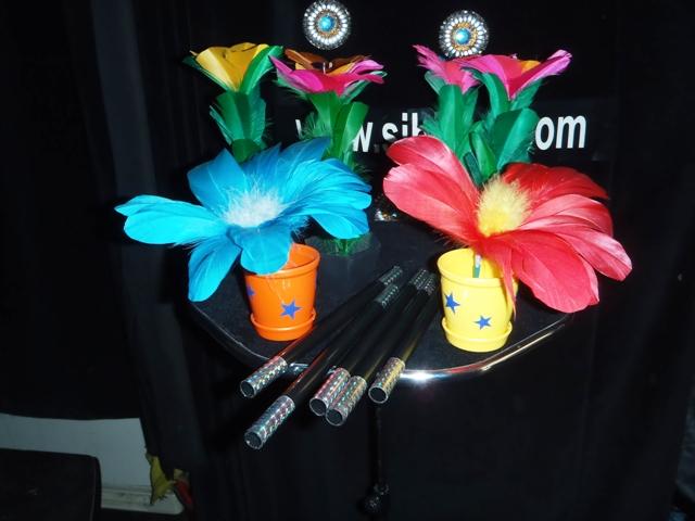 Appearıng a flower in vase.saksıda çıkan çiçek.